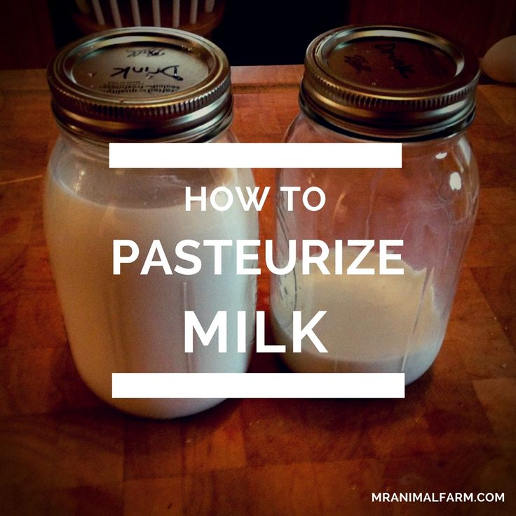 If you have your own fresh milk and want to learn how to pasteurize milk, the process is pretty simple and does not take too much time.