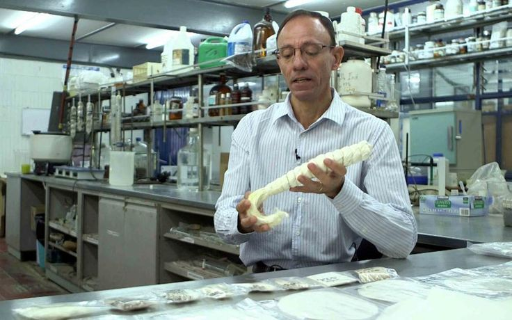 Académico de CUCEI, doctor José Anzaldo Hernández, asesor y director de tesis; en un laboratorio, manipulando la fibra de pita.