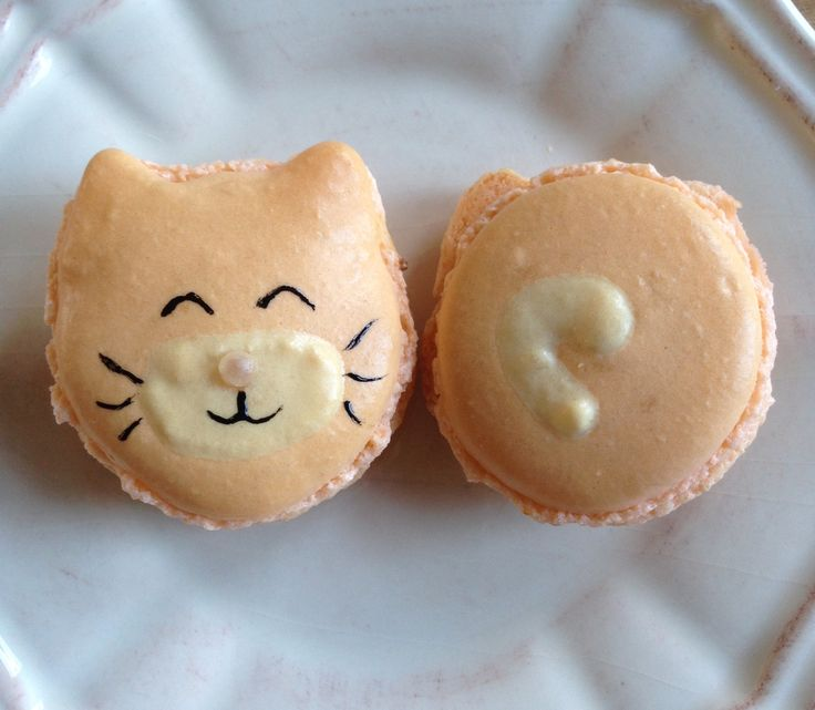 Kitty-cat macarons with carrotcake icing filling