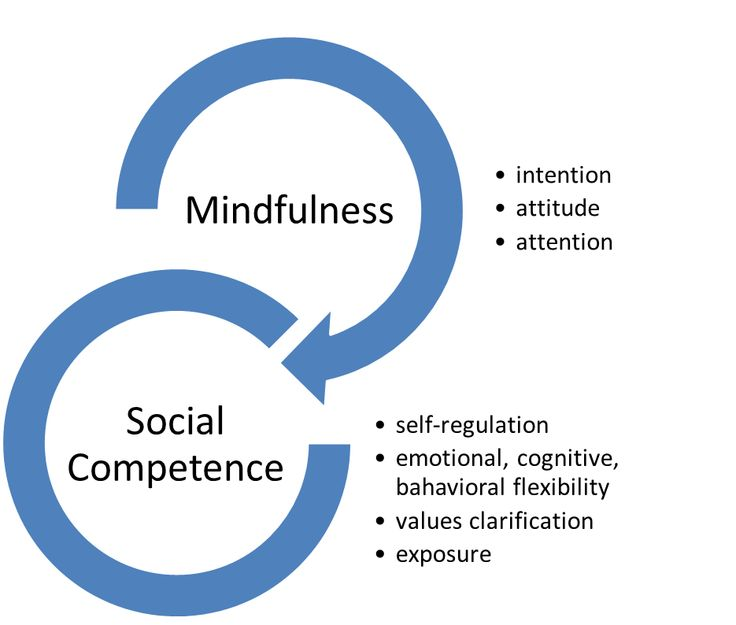 Mindfulness and Social Competence