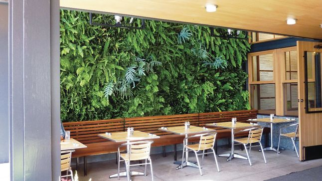 25 best ideas about mur v g tal int rieur on pinterest for Mur vegetal interieur