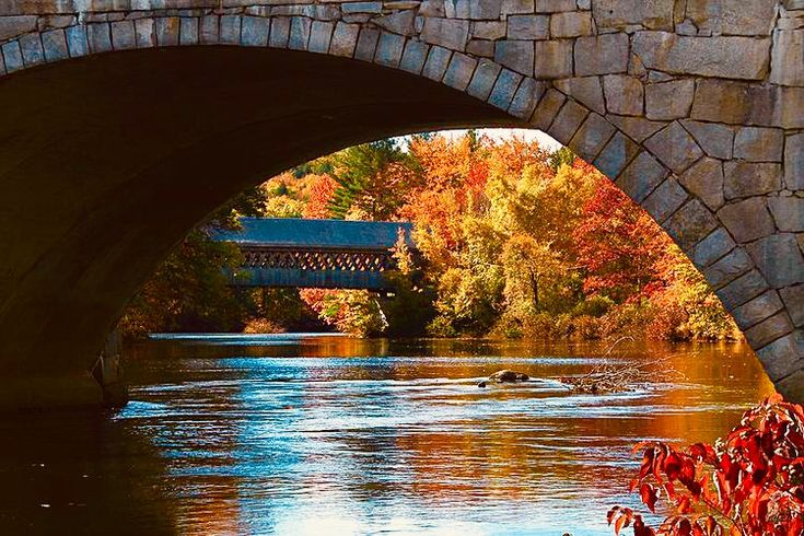 Pin by Daisy Bakes on Autumn in New England in 2020 New