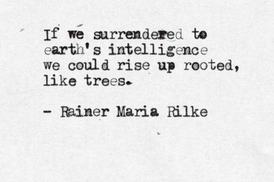 If we surrendered to earth's intelligence we could rise up rooted, like trees. - Rainer Maria Rilke. Poet.