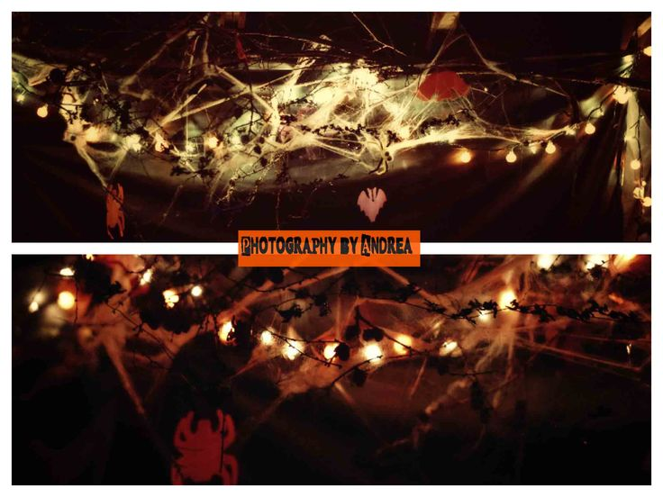 My friend created this #DIY craft with a real tree branch and random decorations. Whatever was related to #Halloween she kept adding until it was full.  Try it yourself! #2013 #Newfoundland #AndreaEdwardsPhotography