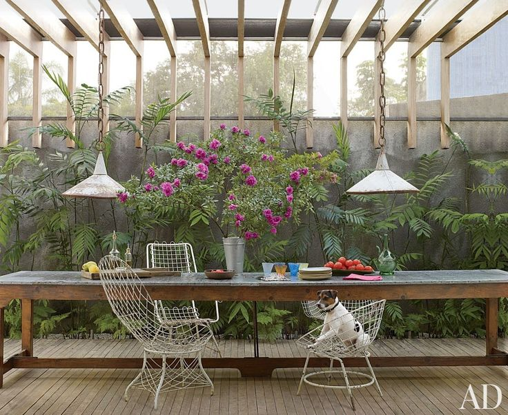 Jack, a Brazilian terrier, is at home in a São Paulo garden room designed by Isay Weinfeld; vintage iron-wire chairs are pulled up to a florist's worktable.