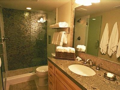 Guest Bathroom Shower Ideas 17 best guest bathroom ideas images on pinterest | bathroom ideas
