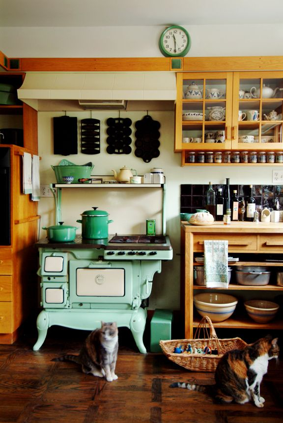 orange and mint green kitchen >> Look at this amazing stove!: Vintage Stove, Kitchens, Interior, Cat, Country Kitchen, Stoves, Vintage Kitchen