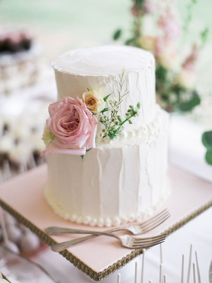 Simple wedding cake, two tier cake, blush rose wedding cake, vintage cake, antique cake - Rachel Solomon Photography Blog | Sharon and David – The Farm at South Mountain | http://blog.rachel-solomon.com