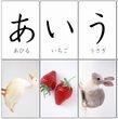 Printable Hiragana Flashcards