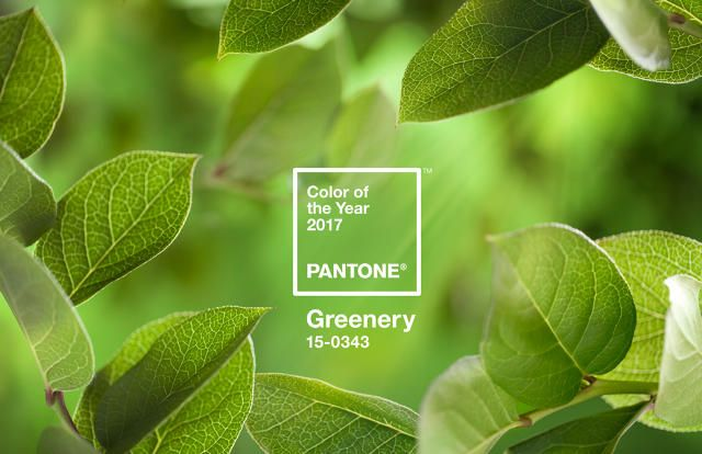 """Pantone describes it as a """"reassuring . . . life-affirming color."""" It also looks like the nuclear isotope in The Simpsons."""