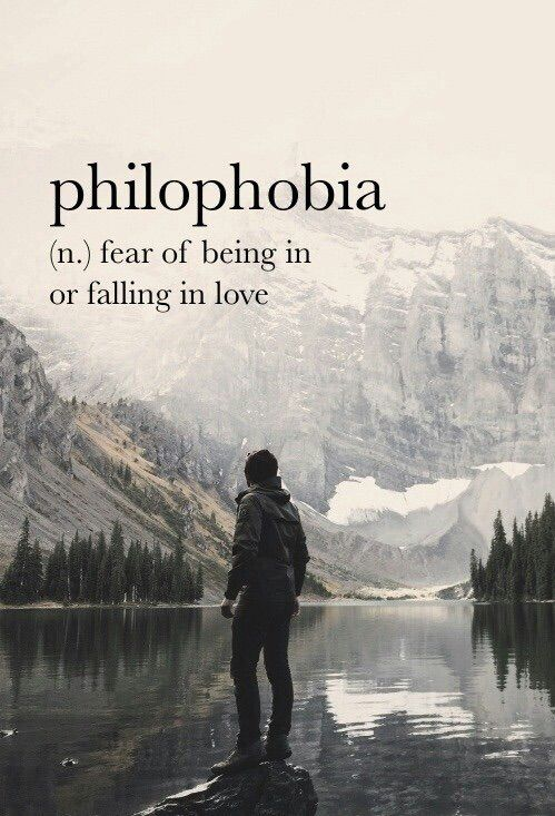The word is from the Greek. Philo means love. Phobia means fear of, usually words that end with phobia are from Greek........
