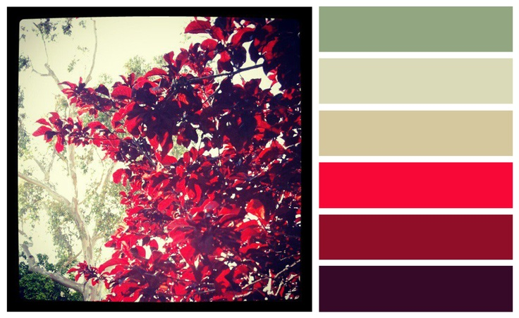 1000+ images about Fu00e4rger inredning on Pinterest : Wall color combination, Maroon walls and Wall ...