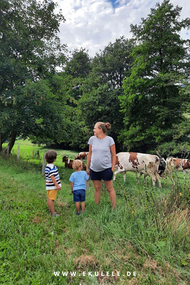 Unser Urlaub Im Familienhotel Ottonenhof Entspannte Tage Im Sauerland In 2021 Urlaub Schweiz Urlaub Reisen Mit Kindern