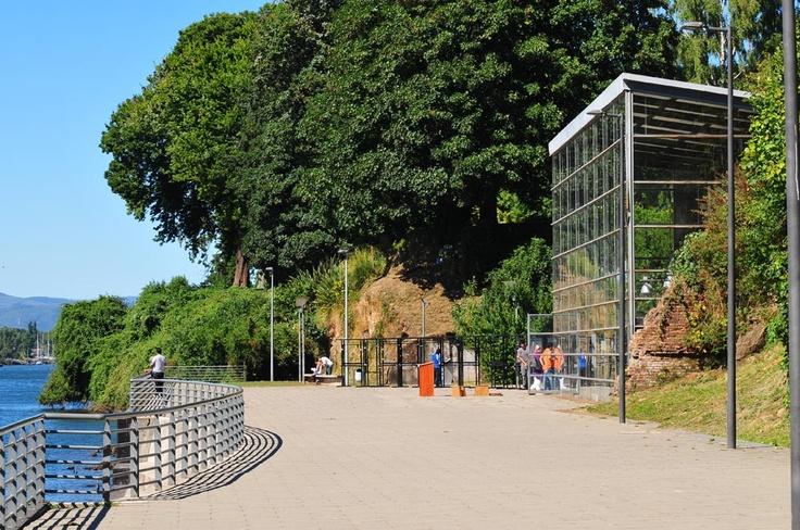 MAC   Valdivia, XIV región, Chile www.arkcisur.com