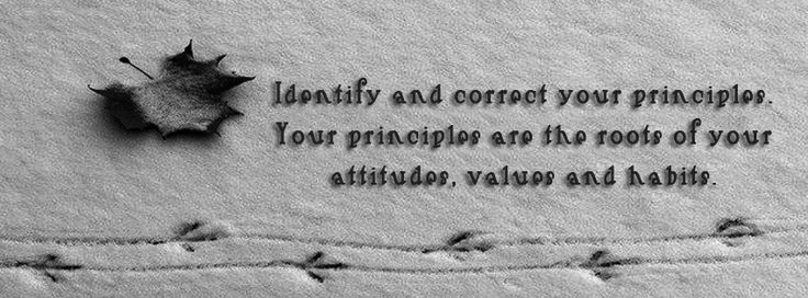 • Identify and correct your principles. Your principles are the roots of your attitudes, values and habits.