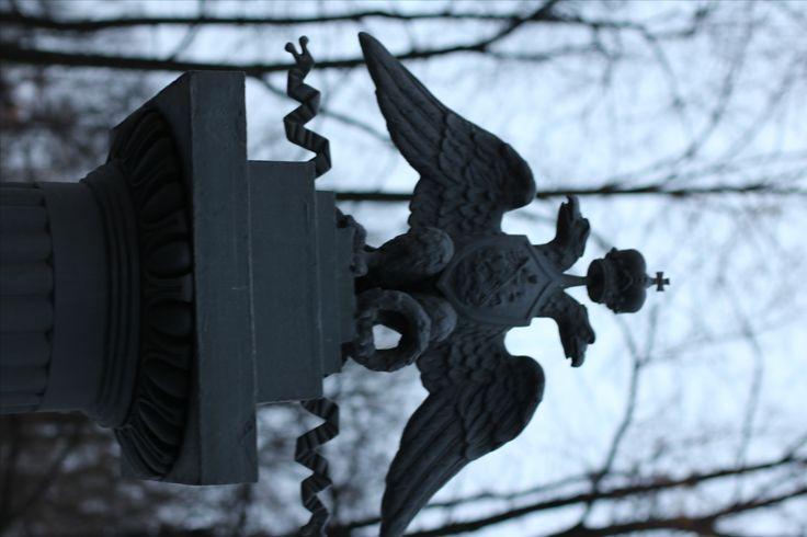 Eagle.)))