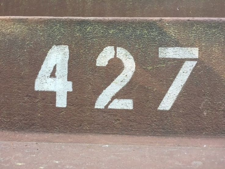 427: Ten years without Jen, twenty-six with | MZS | Roger Ebert