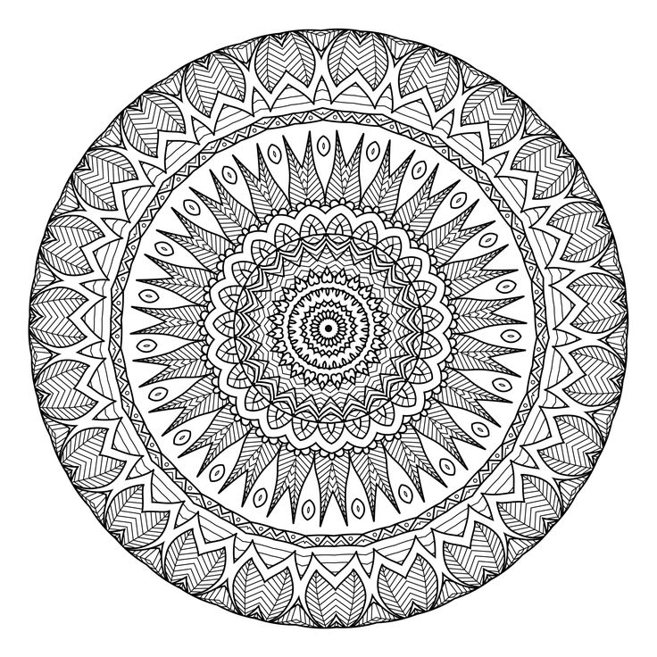 365 best Adult Coloring Pages images on Pinterest Coloring books
