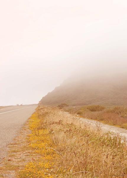 Misty morning 02 California dreaming plakat fra ViSSEVASSE i gule toner