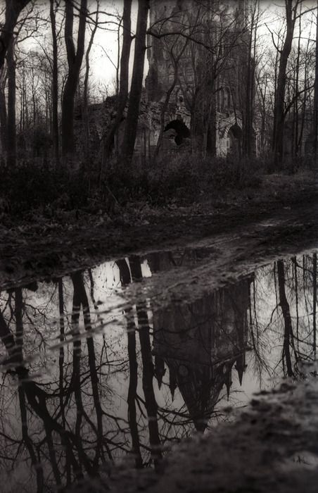 Reminds me of childhood, playing fearlessly in the deep, midwest forests. Creepy but beautiful. Me and my make believe friends.