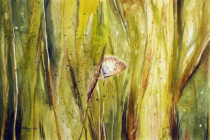 Aleksandra Zając, akwarela, motyl