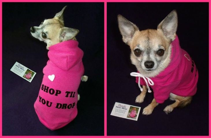 Customized hoodies for your pampered pet