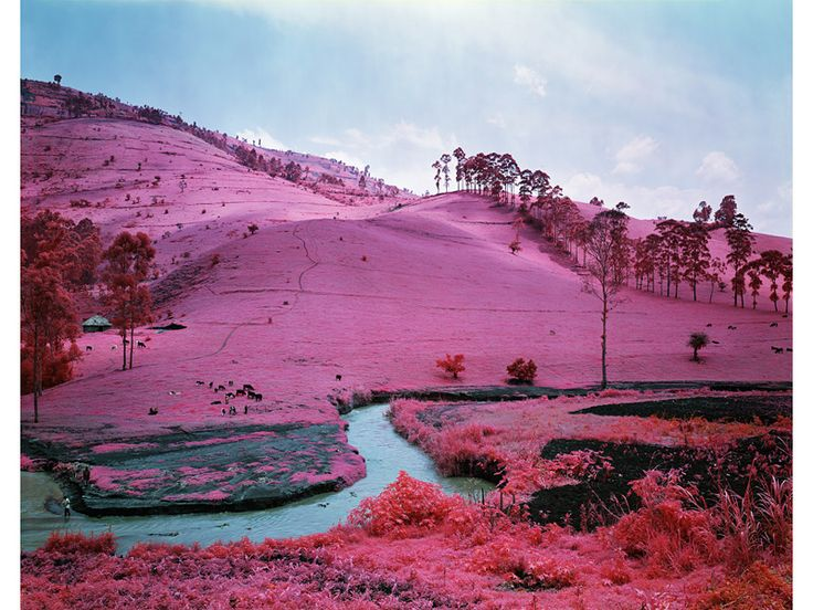 discontinued Kodak infrared film does this!!!  Read this post, awesome camouflage finding film!!!