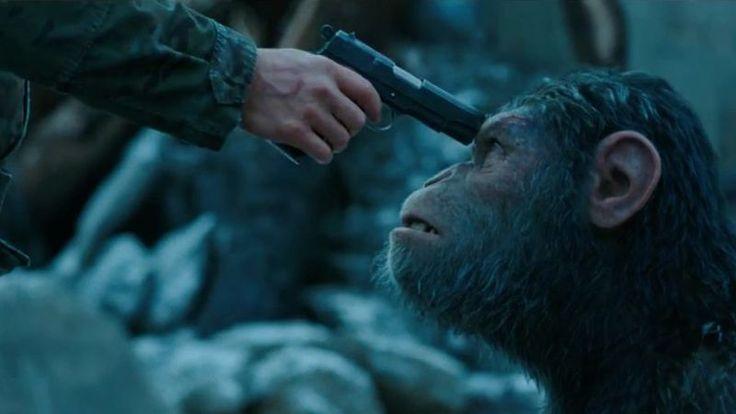 """Filmul """"Planeta Maimuţelor: Războiul"""" este mai mult o poveste de strategie emoţională şi rezolvare a unor conflicte interioare decât o înfruntare concretă şi zgomotoasă între primate şi oameni. Spre deosebire de """"Kong: Insula craniilor"""", unde războiul dintre Kong şi soldaţii sosiţi să exploreze insula din Pacific este exploatat la maximum, în filmul""""Planeta Maimuţelor: Războiul"""" accentul …"""