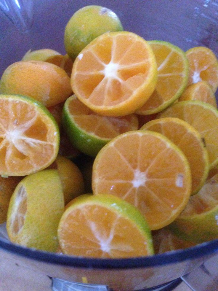 Weigh out cut fruit #kumquatjam