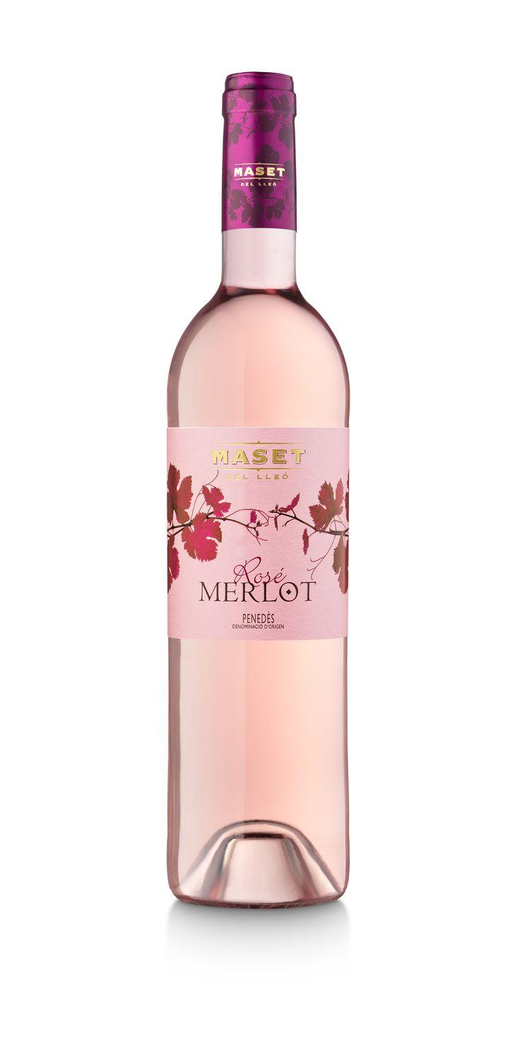 Merlot Rosé Maset del Lleó. Sueño de luz. Elaborado con la variedad merlot mediante un proceso de vinificación sin maceración que proporciona unos mostos pálidos y frescos. Un moderno e innovador vino rosado que evoca finos y delicados aromas florales. Un reto para paladares curiosos.