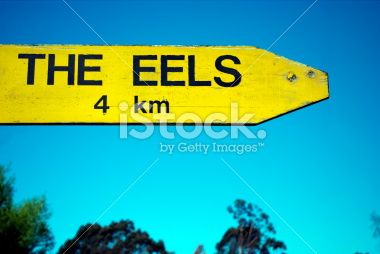 The Eels Sign Royalty Free Stock Photo