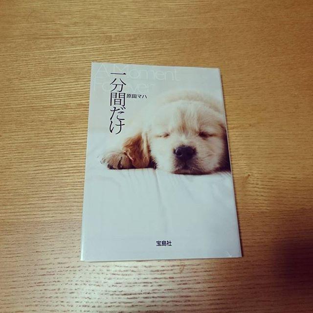 気持ちや状況が自分と重なり、泣きながら一気読み。 ペットも大切な家族。 #読書  #一分間だけ  #原田マハ  #愛犬