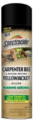 cool Spectracide Carpenter Bee and Ground Nesting Yellow Jacket Foaming Aerosol, 16-Ounce - For Sale Check more at http://shipperscentral.com/wp/product/spectracide-carpenter-bee-and-ground-nesting-yellow-jacket-foaming-aerosol-16-ounce-for-sale/
