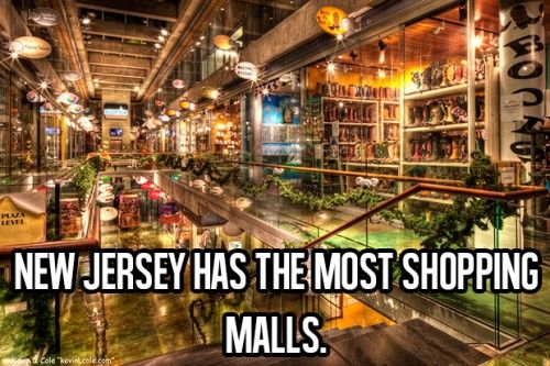 Awesome Facts About Life (11) New Jersey has the most shopping malls...