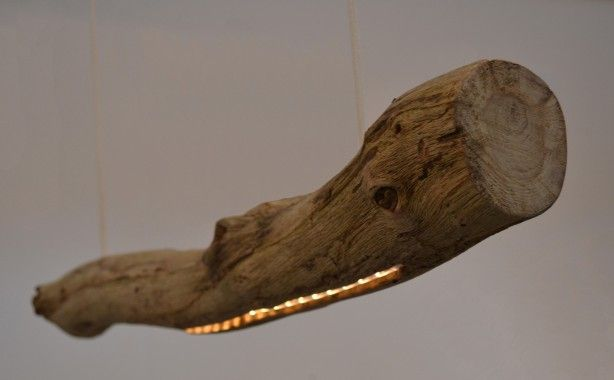 hanglamp LedWood natuurlijke boomstam lamp