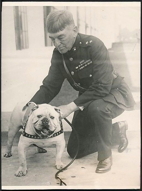A Vintage 1927 Original Photograph issued by Wide World Photos capturing the new mascot for the U.S. Marine Corps - an English bulldog named Private Pagett !  Pinned by Judi Crowe.