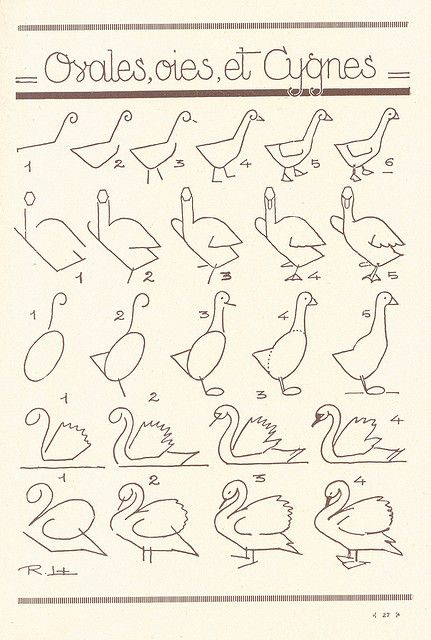 les animaux 12 by pilllpat (agence eureka), via Flickr