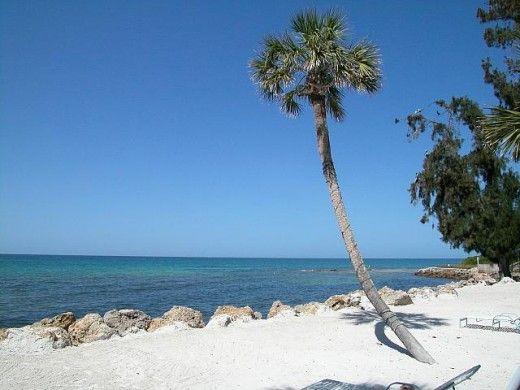 I Love sarasota,Florida | ... one place to rent a florida villa sarasota luxury florida villas if