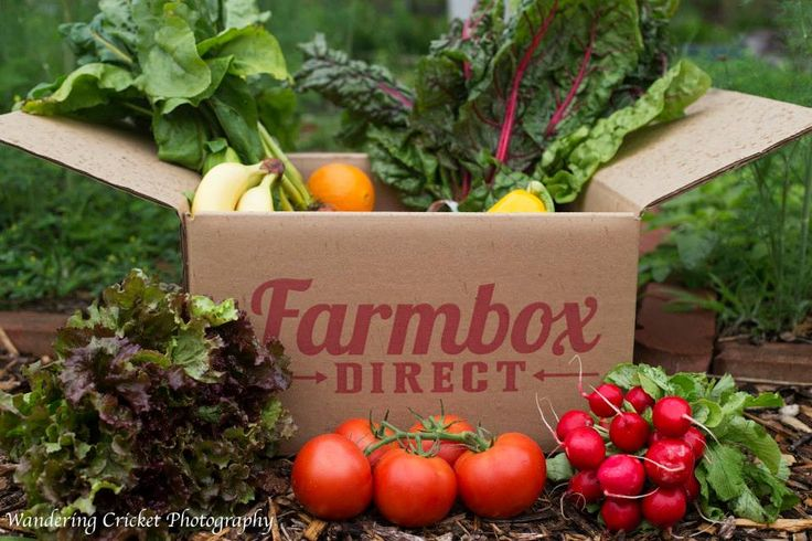 Fresh local produce delivered to your door! Organic and Natural Produce Delivery | Farmbox Direct ☀ FREE Delivery to over 38,000 zip codes!