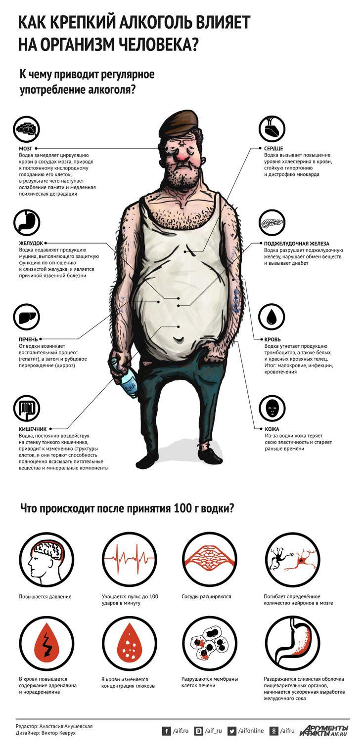 Как водка влияет на организм человека? Инфографика | Инфографика | Вопрос-Ответ | Аргументы и Факты