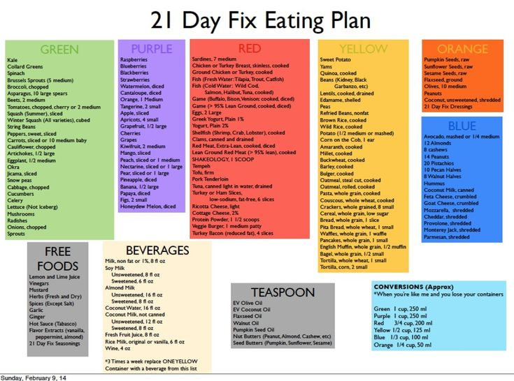 NUTRITION REVIEW: 21 Day Fix Extreme: Countdown to Competition plan ...