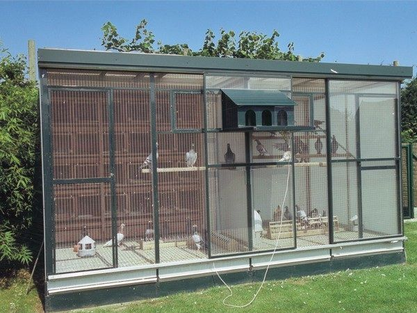 Simple open front two compartment pigeon loft.