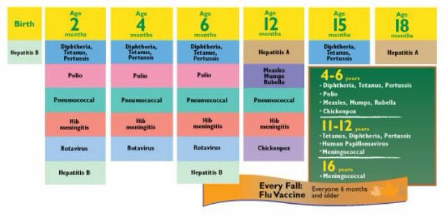 Baby vaccination timeline