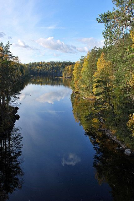 Calm waters in Repovesi National Park, Finland (by evaberry).