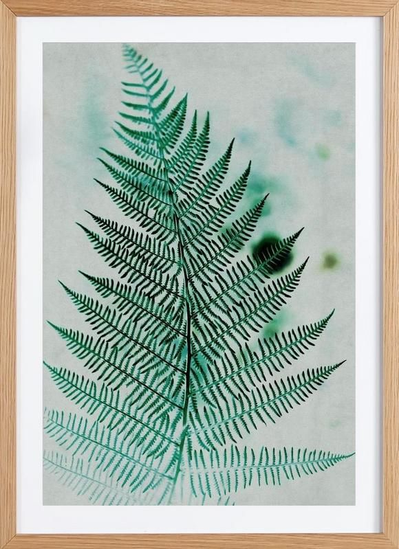 Green Leaf 2 as Framed Poster by Mareike Böhmer | JUNIQE