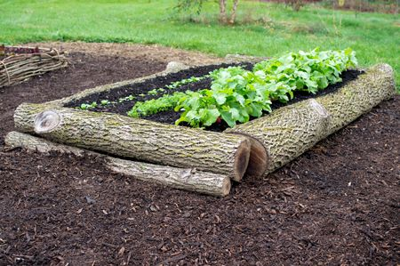 How to Build 5 Different Raised Beds: Organic Gardening