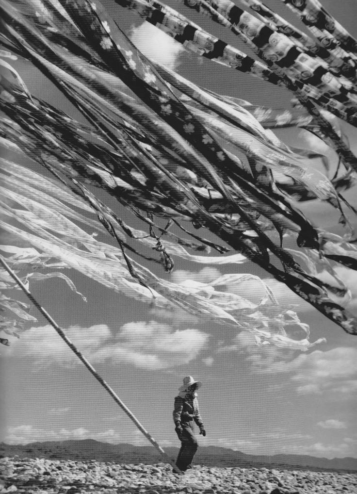 Silk drying, Kyoto, 1951 by Werner Bischof
