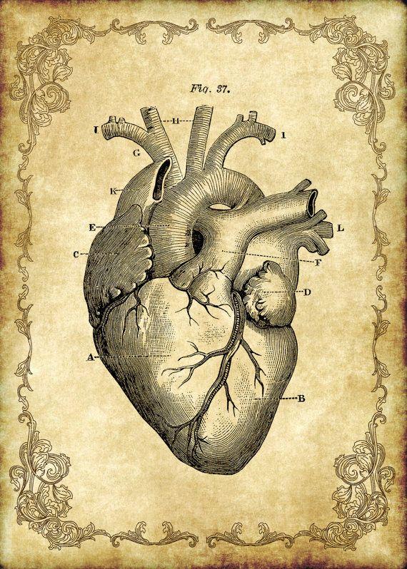 """5 x 7"""" viktorianischen Goth Steampunk Antique Anatomie Herz - digitale Einzelbilder, sofortiges Download, Steampunk druckbare, digitaler Download"""