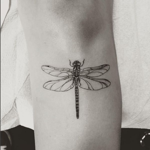 dragonfly tattoo - next idea