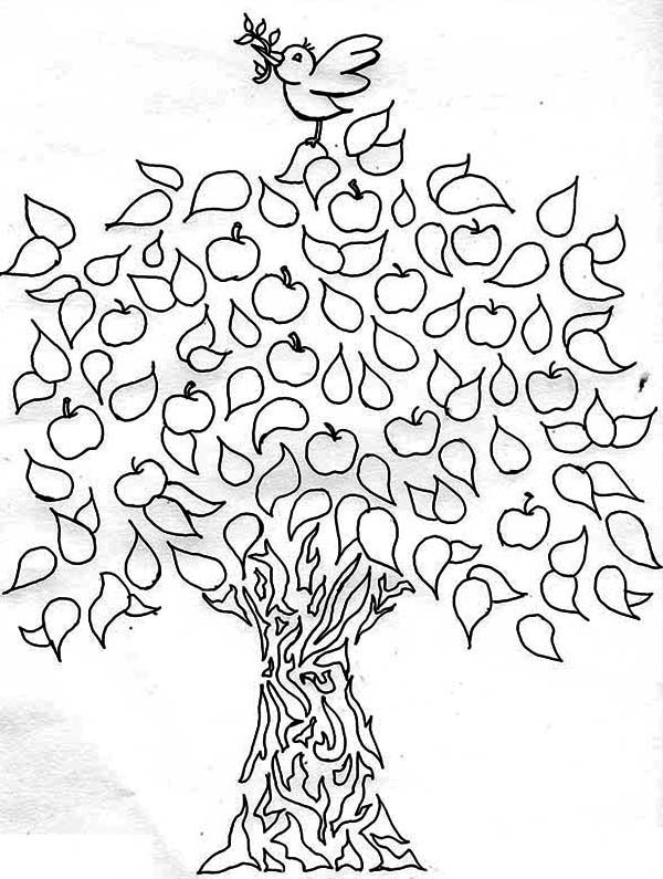 A Bird and an Apple Tree Coloring Page   Kids Play Color